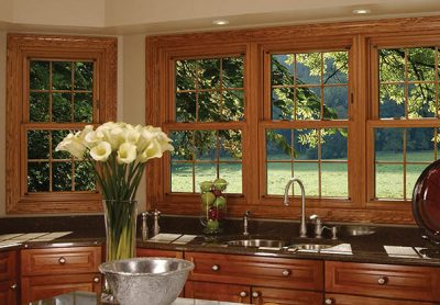 double hung window overseeing a garden