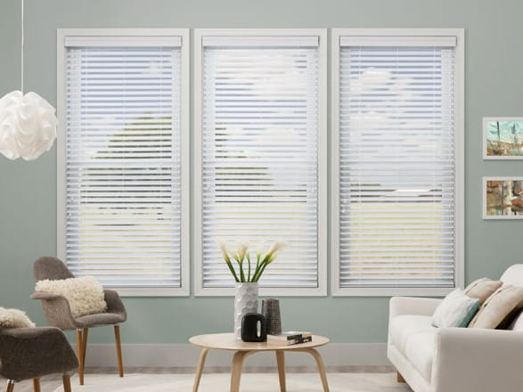 blinds for double hung windows